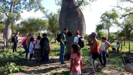 comunidad wichi Morillo